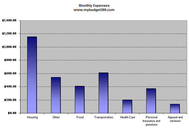 net-monthly-expenses