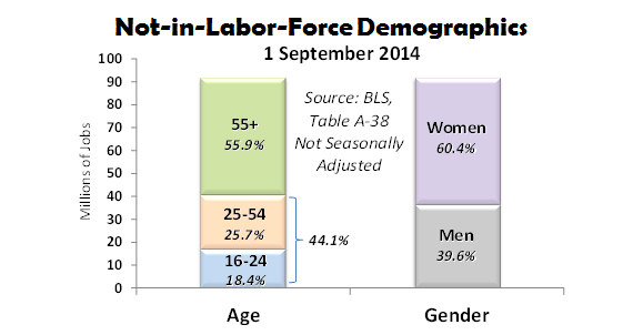 Not-in-Labor-Force-Demographics